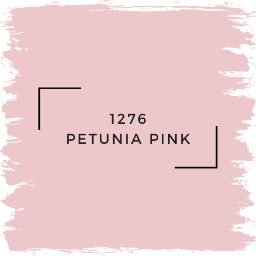 Benjamin Moore 1276 Petunia Pink