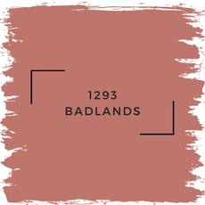 Benjamin Moore 1293 Badlands