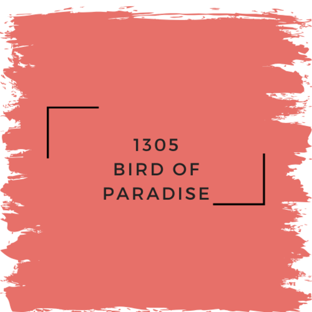 Benjamin Moore 1305 Bird Of Paradise