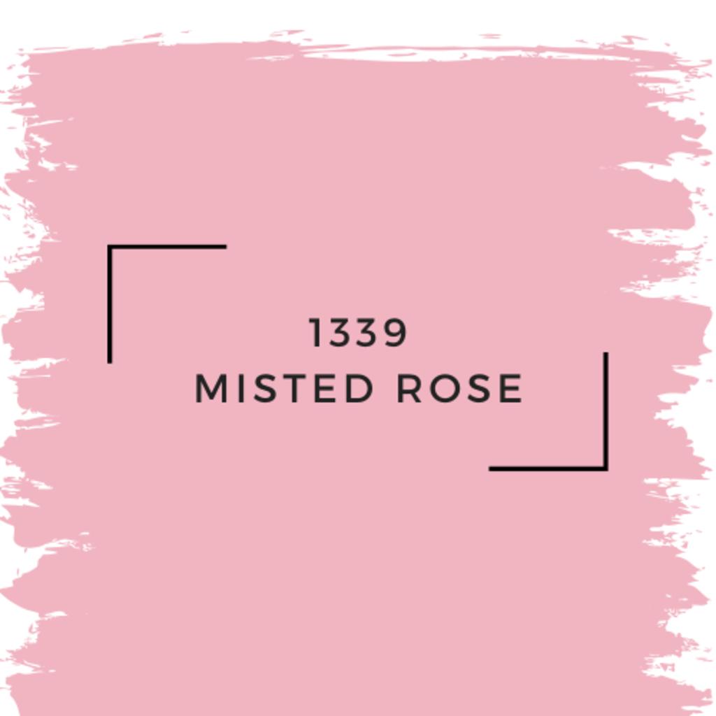 Benjamin Moore 1339 Misted Rose