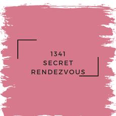 Benjamin Moore 1341 Secret Rendezvous