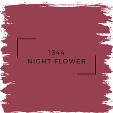 Benjamin Moore 1344 Night Flower