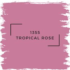 Benjamin Moore 1355 Tropical Rose