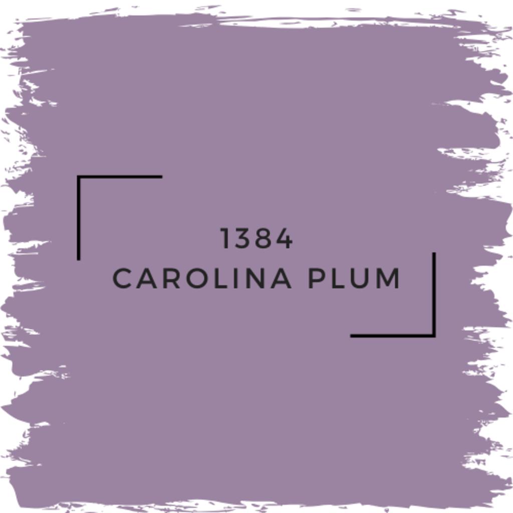 Benjamin Moore 1384 Carolina Plum