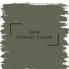 Benjamin Moore 1498 Forest Floor
