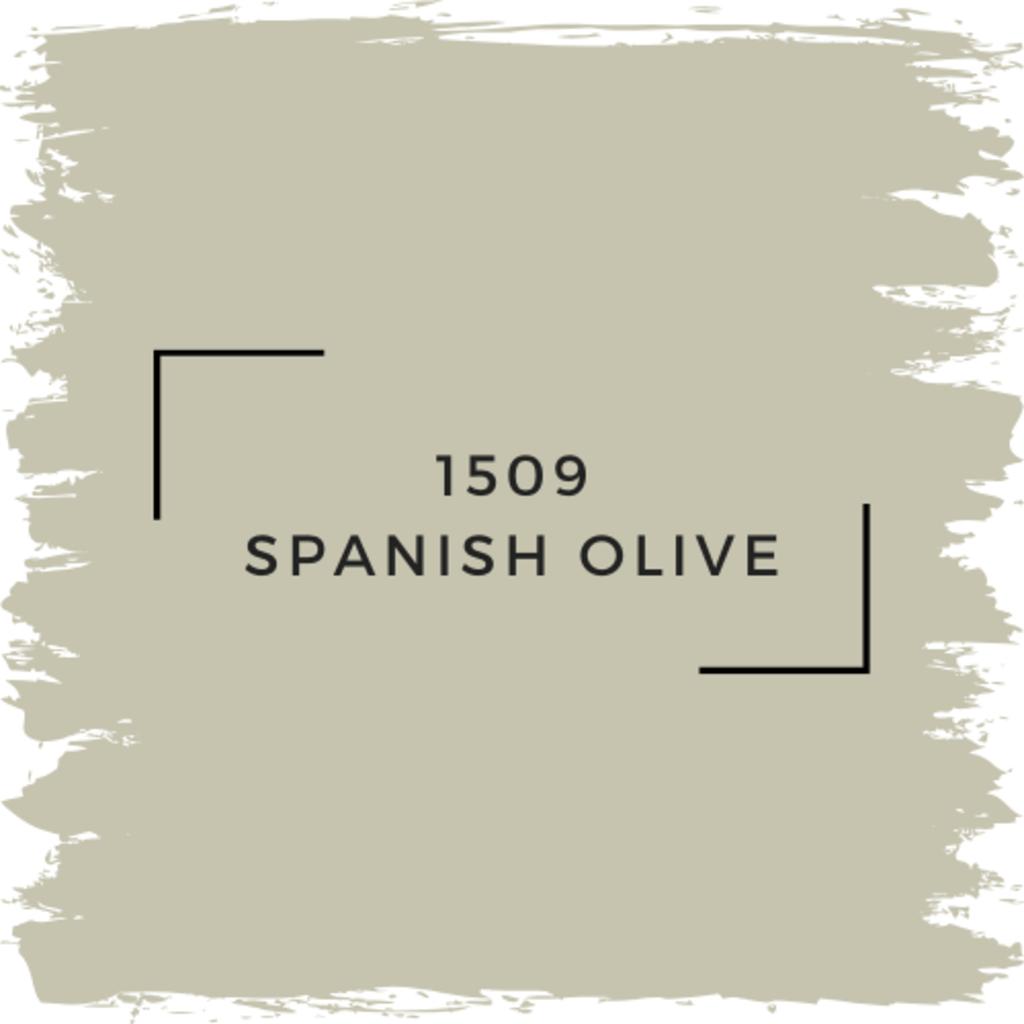 Benjamin Moore 1509 Spanish Olive