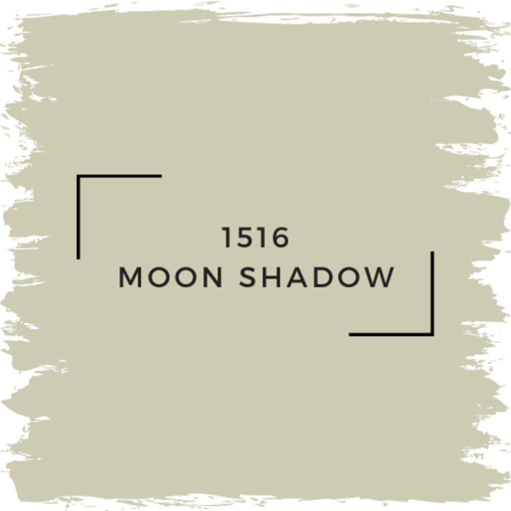 Benjamin Moore 1516 Moon Shadow