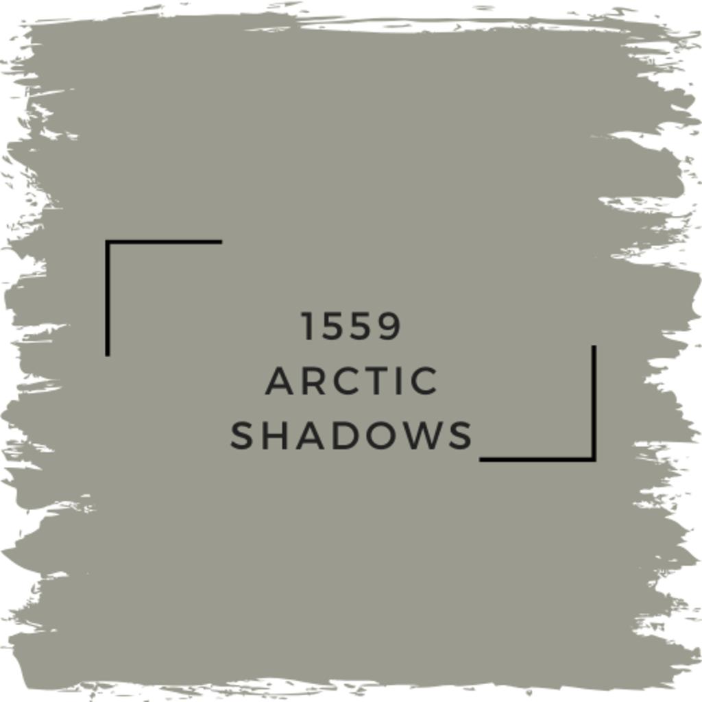 Benjamin Moore 1559 Arctic Shadows