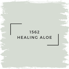 Benjamin Moore 1562 Healing Aloe