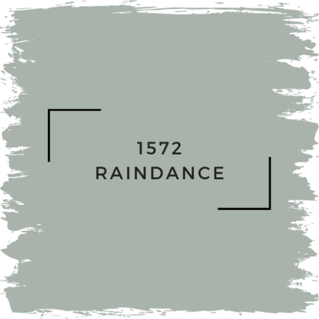 Benjamin Moore 1572 Raindance