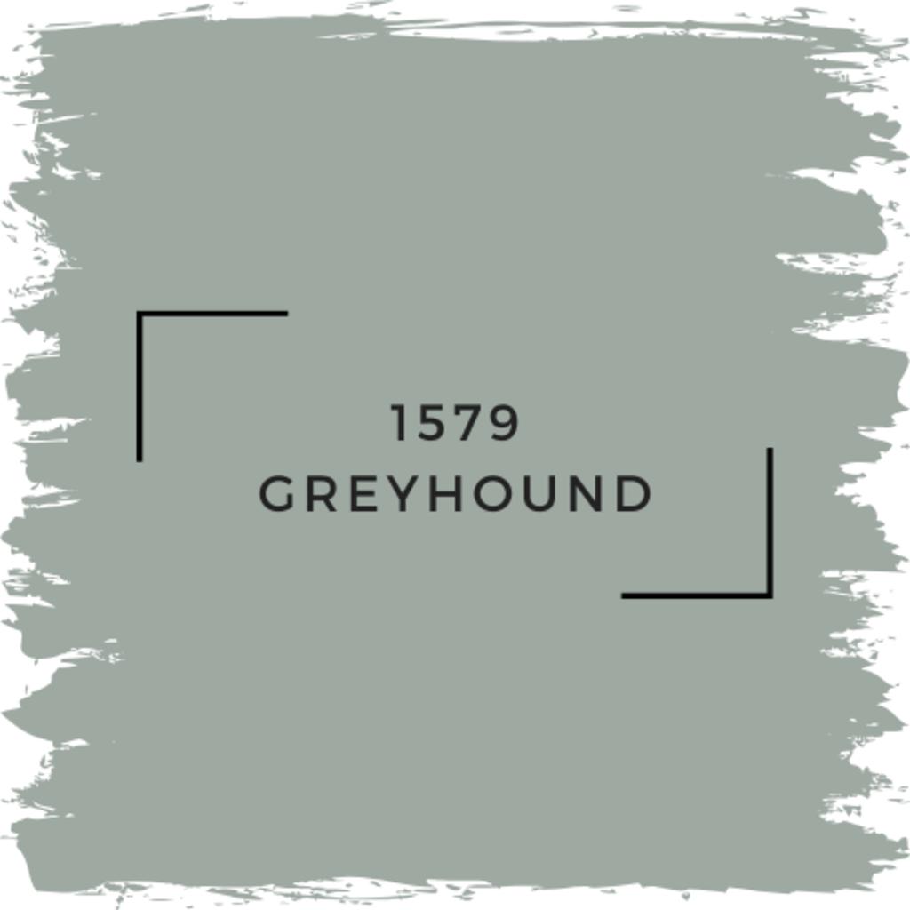 Benjamin Moore 1579 Greyhound