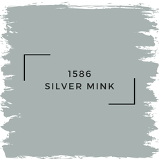 Benjamin Moore 1586 Silver Mink