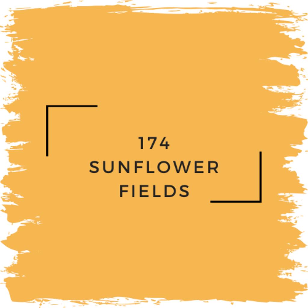 Benjamin Moore 174 Sunflower Fields