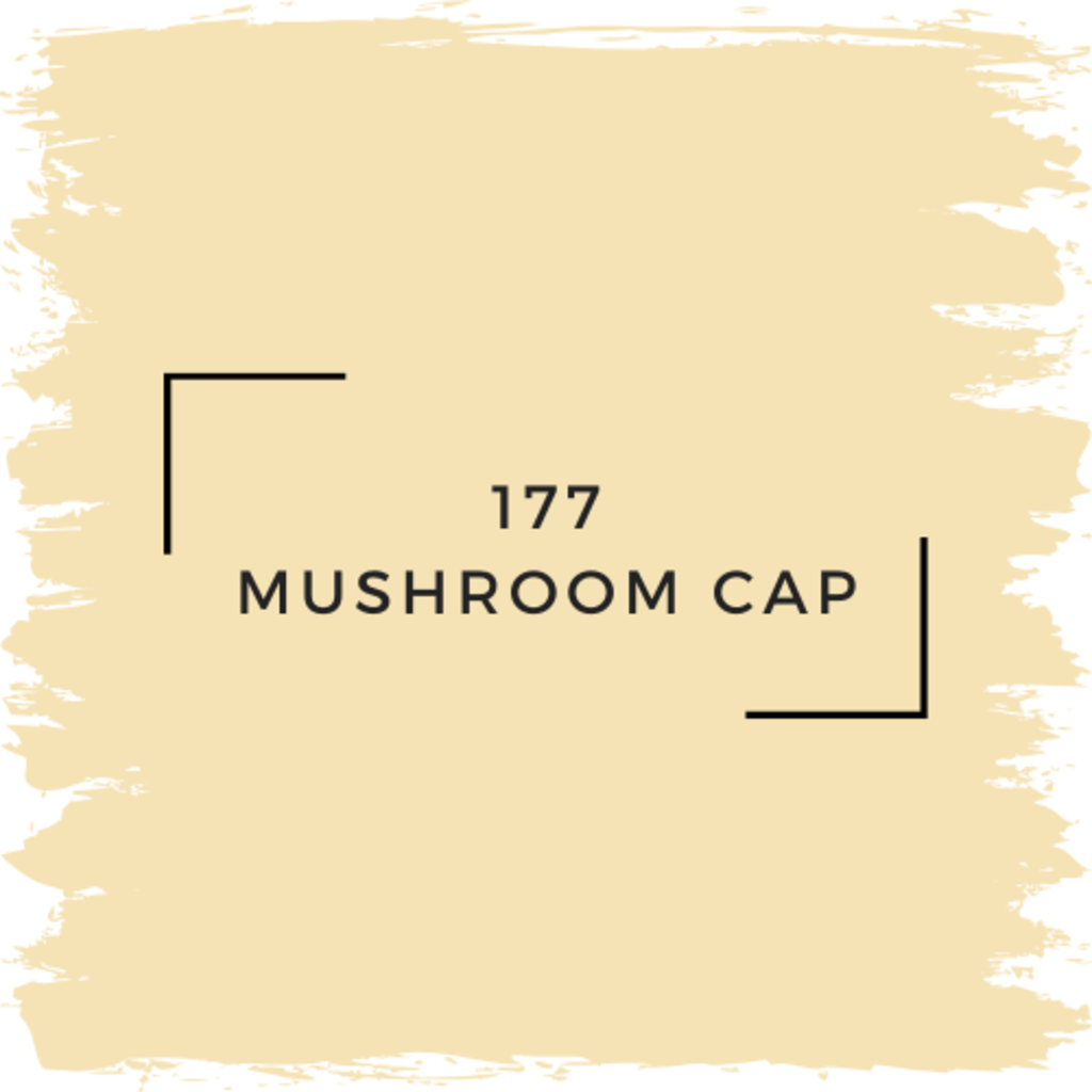 Benjamin Moore 177 Mushroom Cap