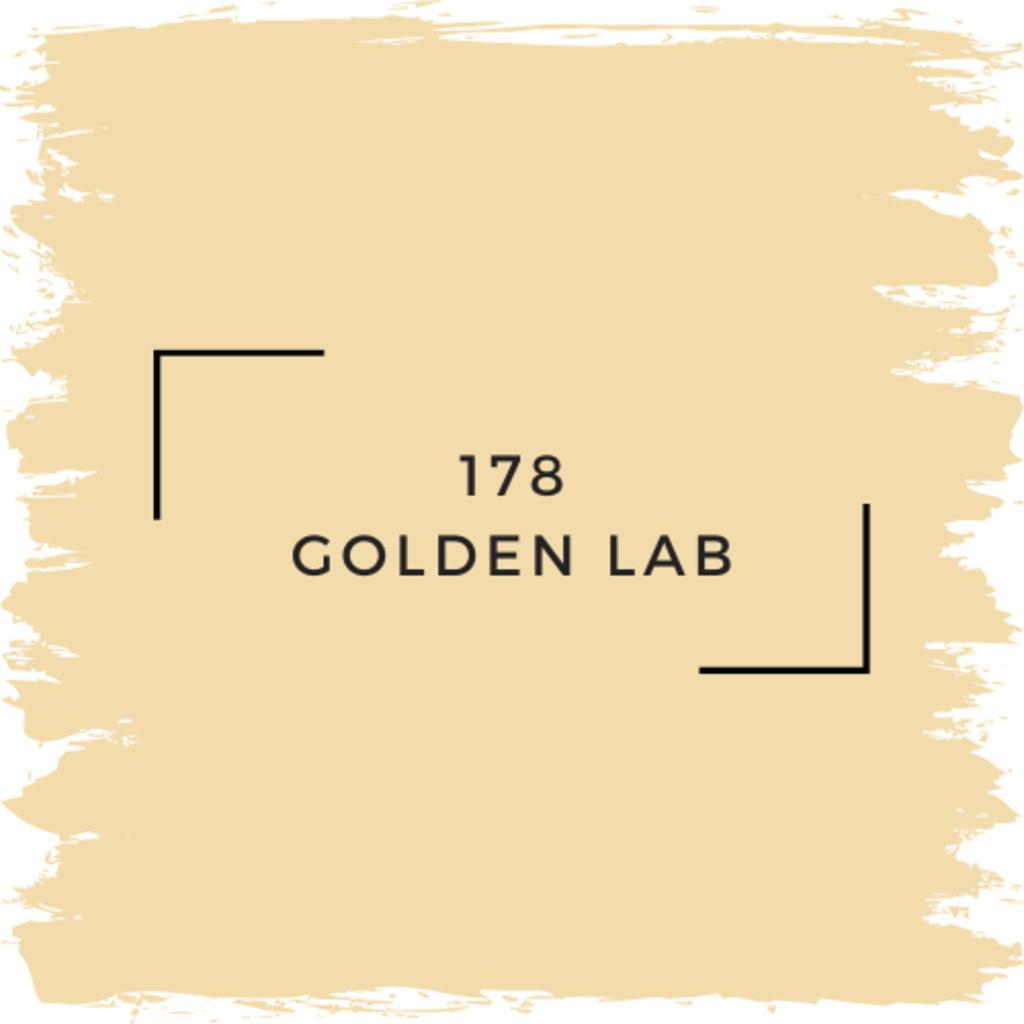 Benjamin Moore 178 Golden Lab