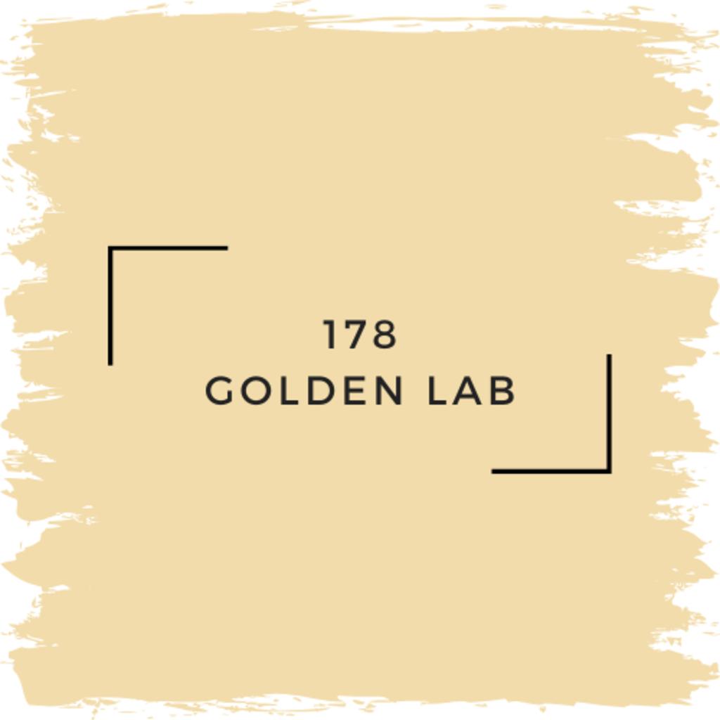 Benjamin Moore 178 Golden Lab