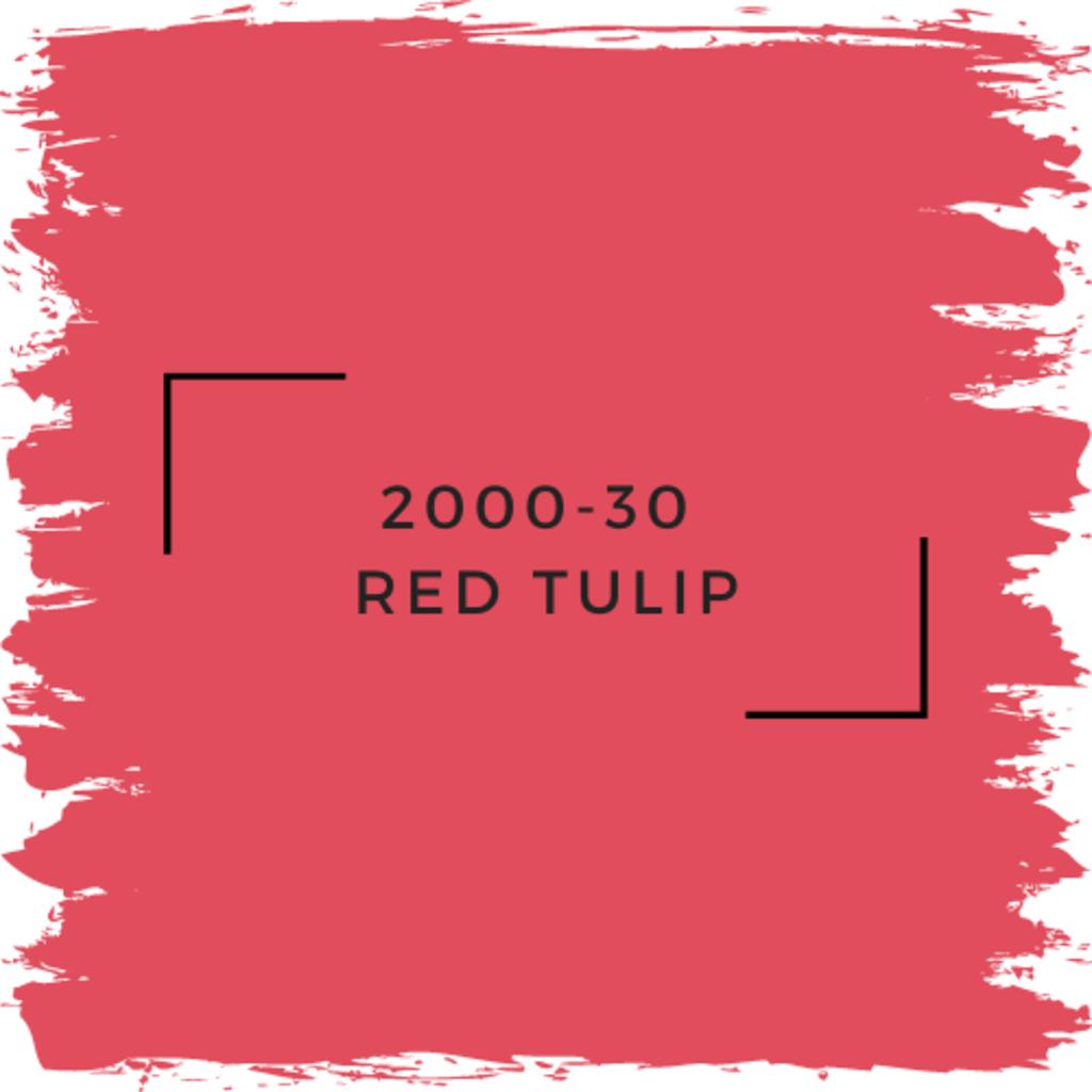 Benjamin Moore 2000-30  Red Tulip