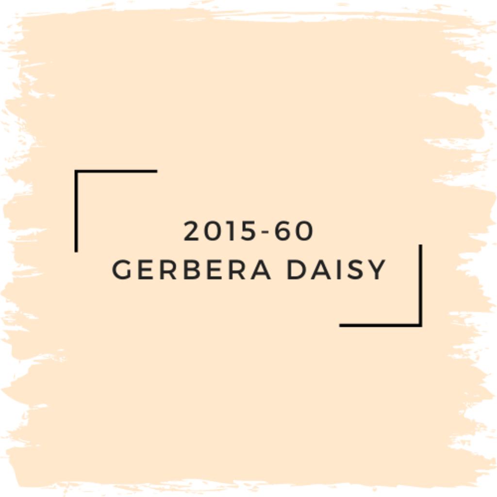 Benjamin Moore 2015-60 Gerbera Daisy