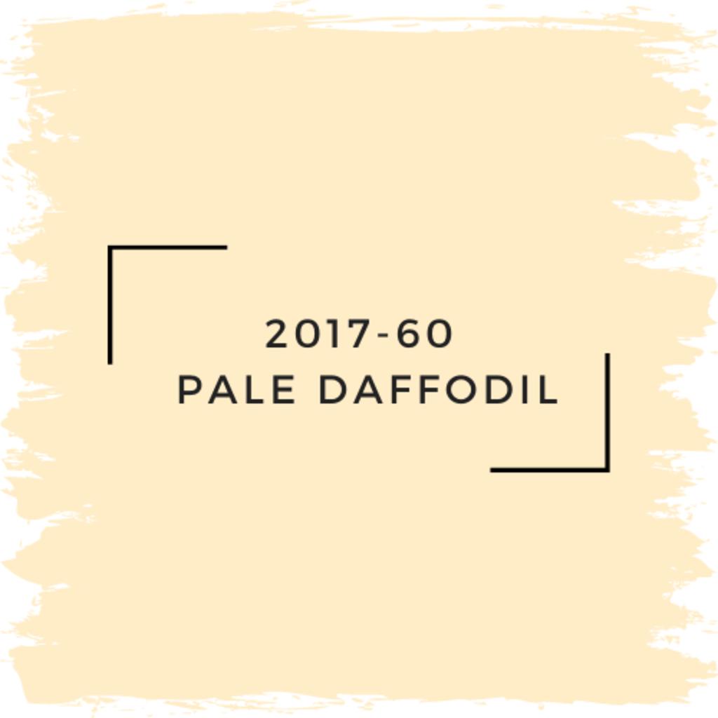 Benjamin Moore 2017-60  Pale Daffodil