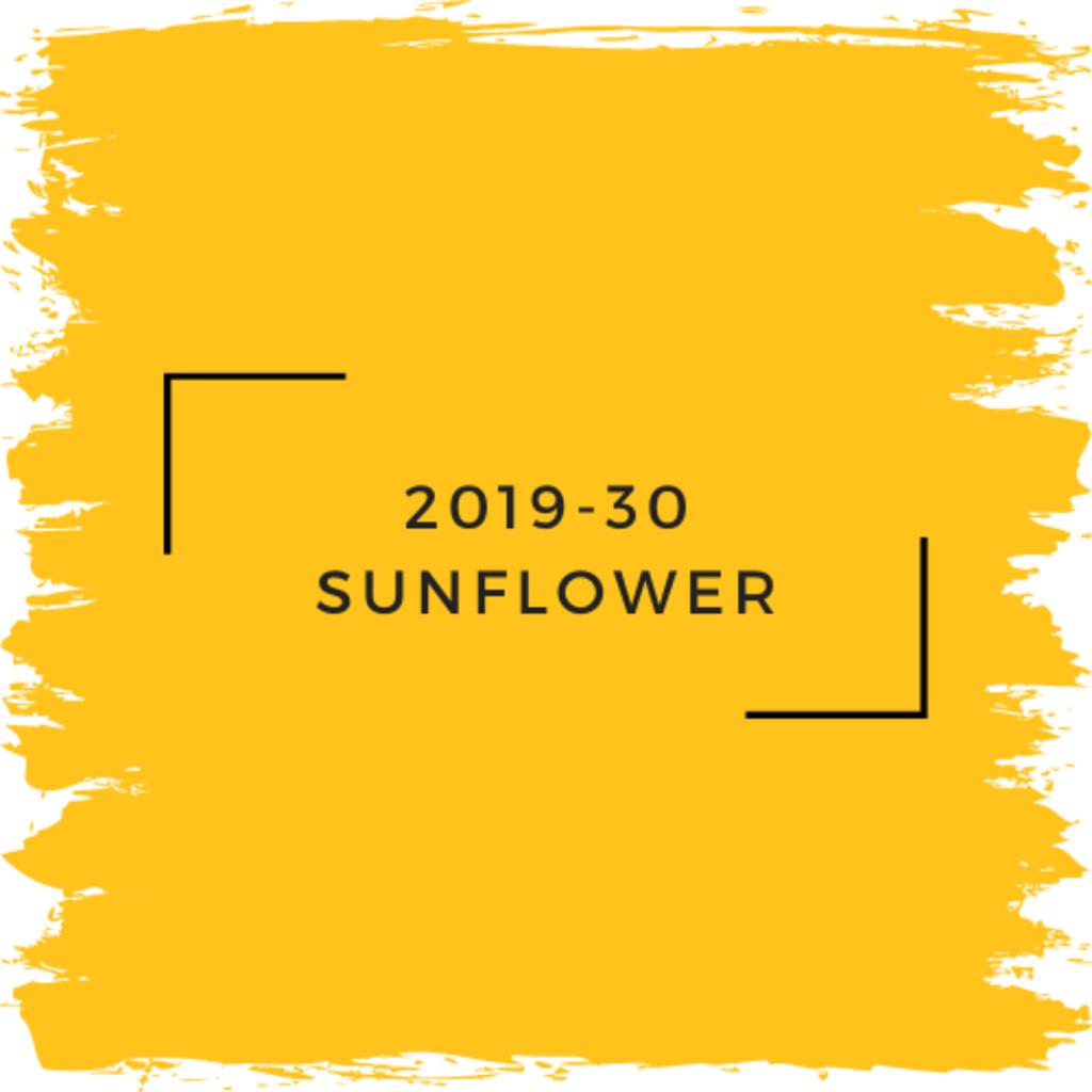Benjamin Moore 2019-30 Sunflower