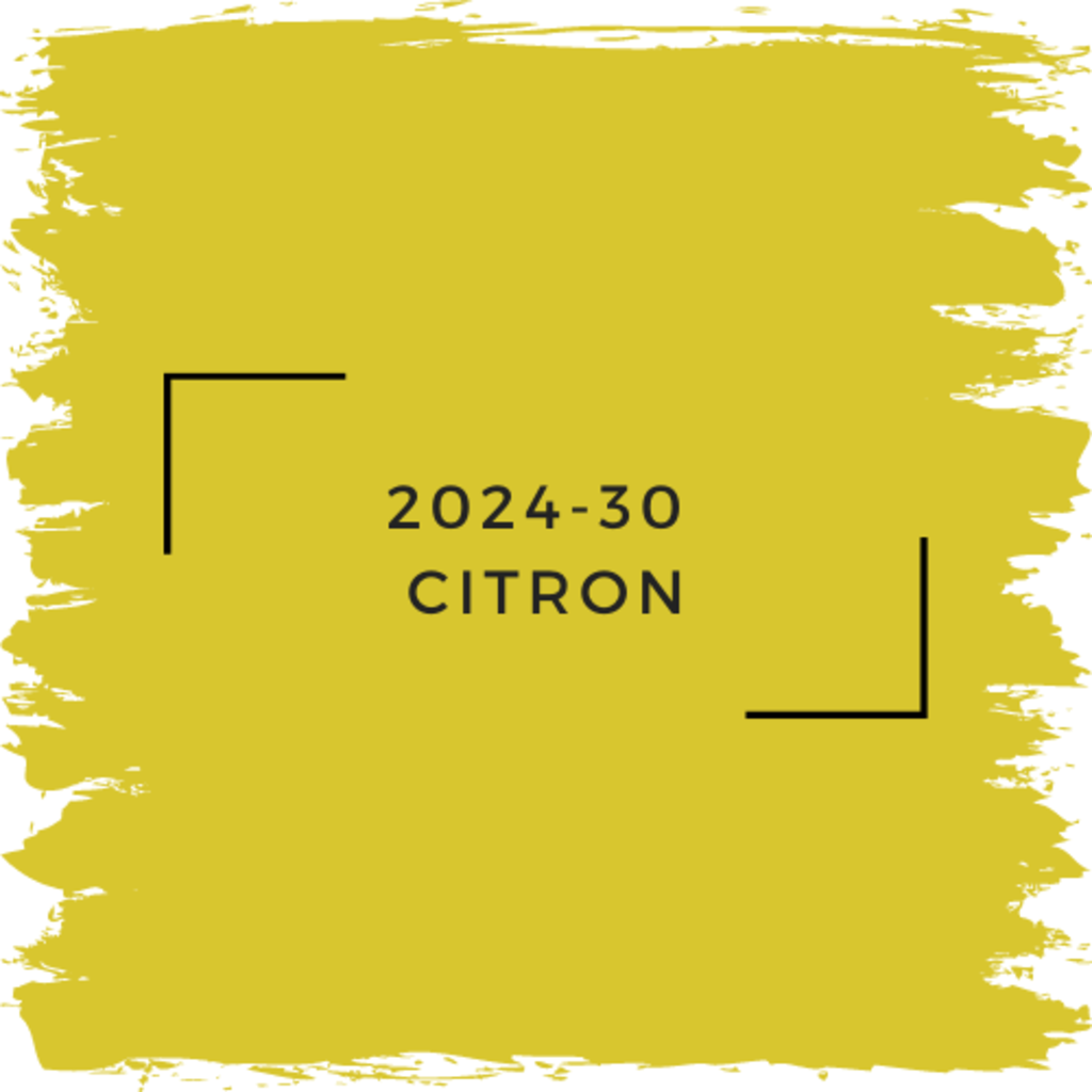 Benjamin Moore 2024-30  Citron