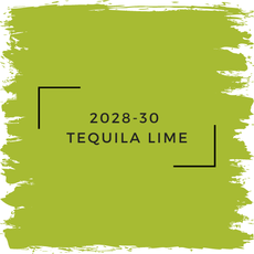 Benjamin Moore 2028-30  Tequila Lime
