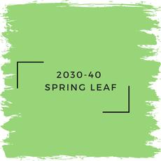 Benjamin Moore 2030-40  Spring Leaf