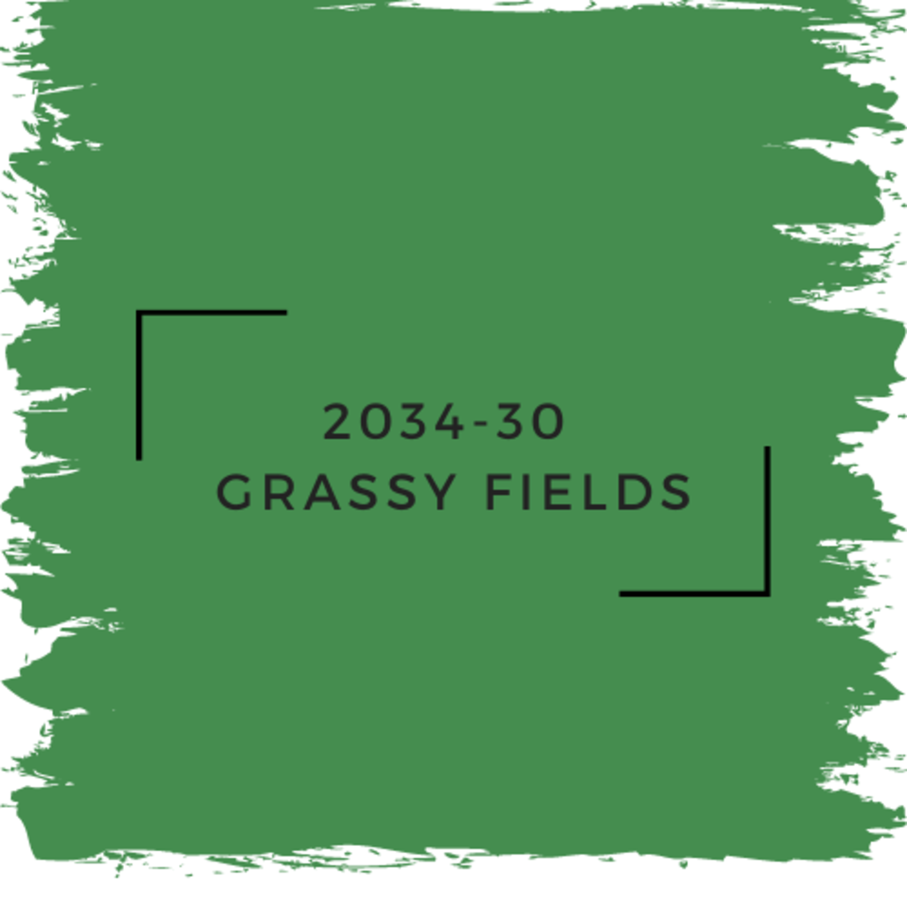 Benjamin Moore 2034-30  Grassy Fields