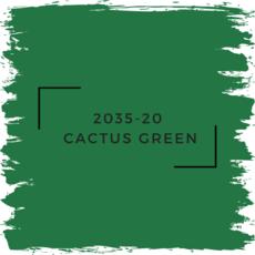 Benjamin Moore 2035-20  Cactus Green