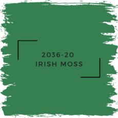 Benjamin Moore 2036-20  Irish Moss