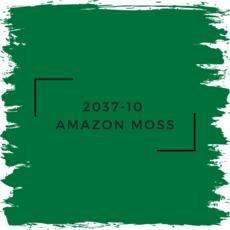 Benjamin Moore 2037-10  Amazon Moss