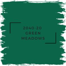 Benjamin Moore 2040-20  Green Meadows