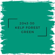 Benjamin Moore 2043-30  Kelp Forest Green