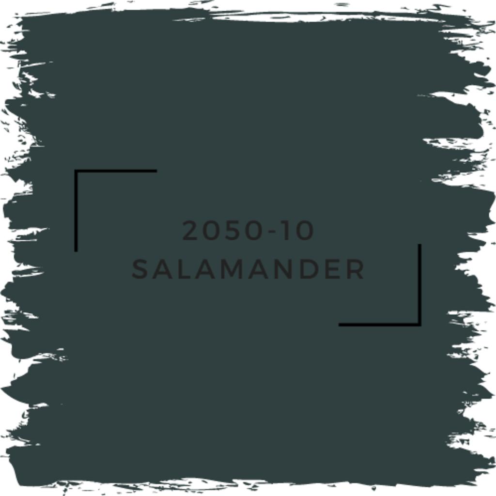Benjamin Moore 2050-10 Salamander