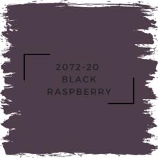 Benjamin Moore 2072-20  Black Raspberry