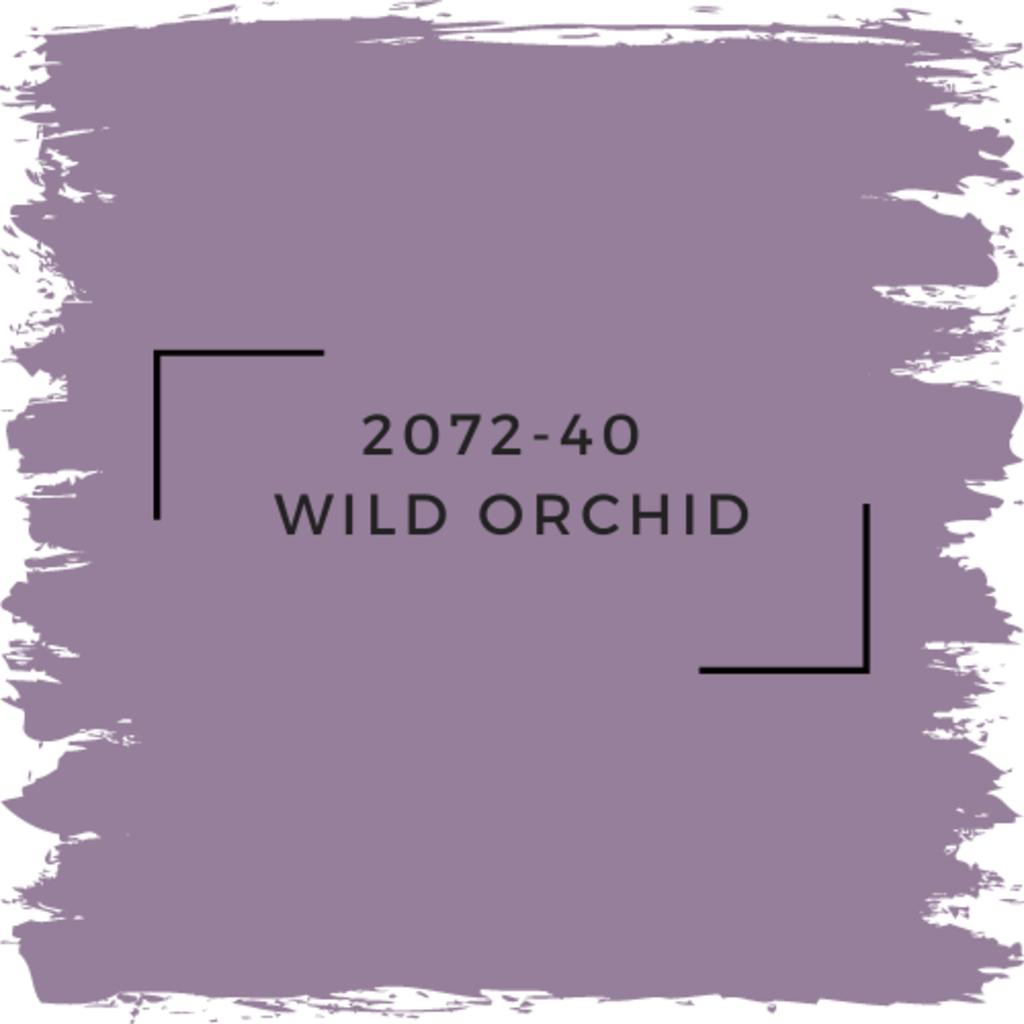 Benjamin Moore 2072-40  Wild Orchid