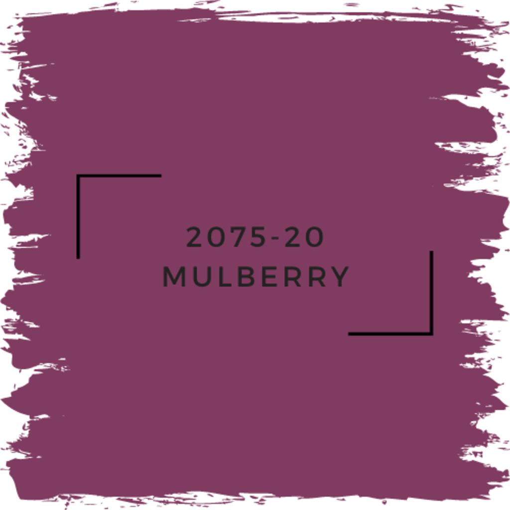 Benjamin Moore 2075-20 Mulberry