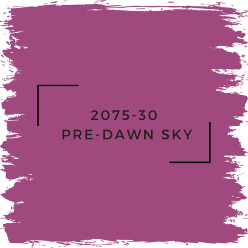 Benjamin Moore 2075-30  Pre-Dawn Sky