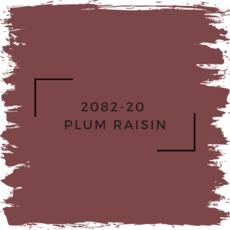 Benjamin Moore 2082-20  Plum Raisin