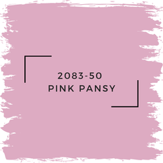 Benjamin Moore 2083-50  Pink Pansy
