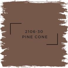 Benjamin Moore 2106-30  Pine Cone