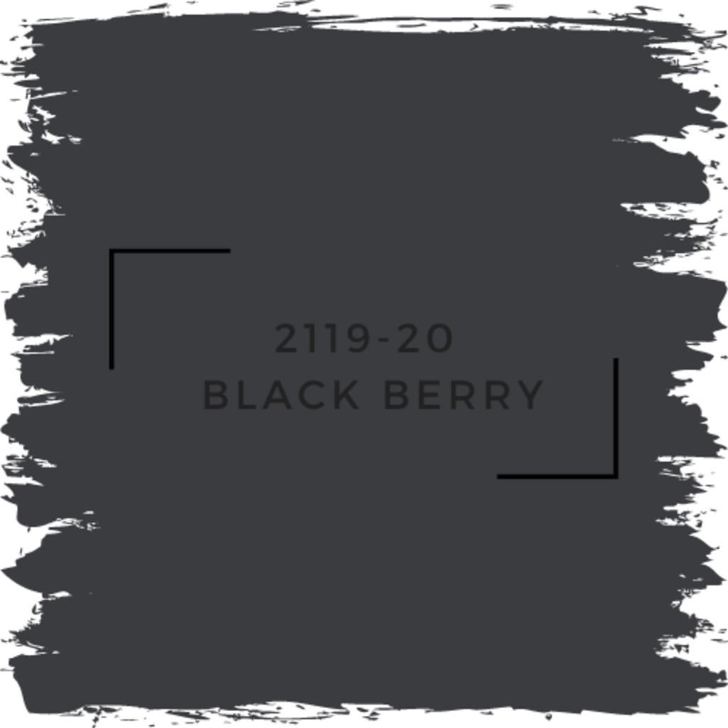 Benjamin Moore 2119-20  Black Berry