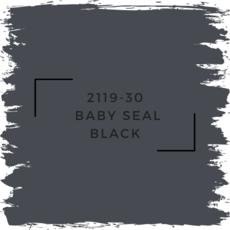Benjamin Moore 2119-30  Baby Seal Black