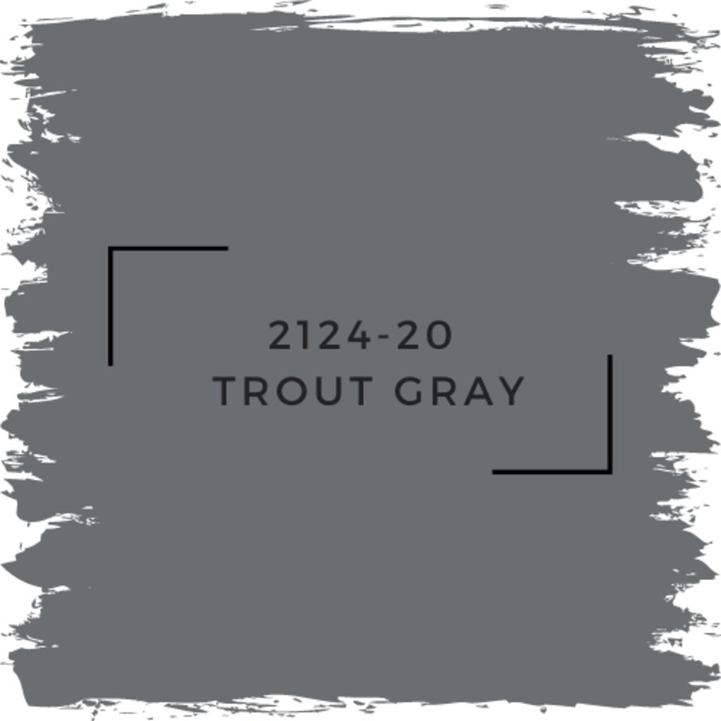 Benjamin Moore 2124-20  Trout Gray