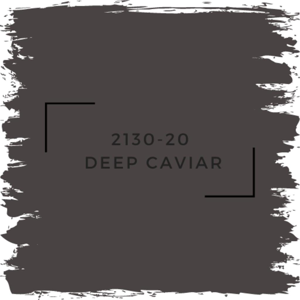 Benjamin Moore 2130-20  Deep Caviar