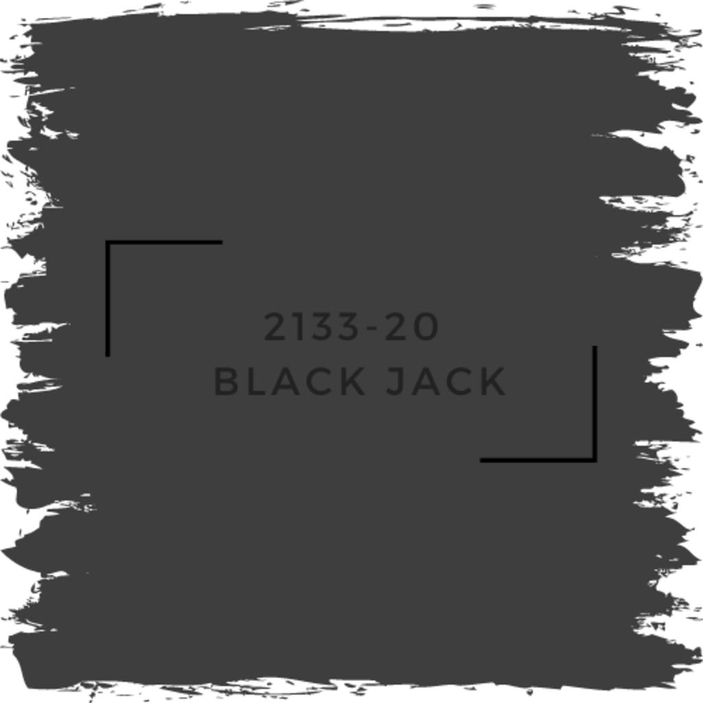 Benjamin Moore 2133-20  Black Jack