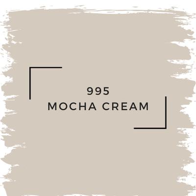 Benjamin Moore 995 Mocha Cream