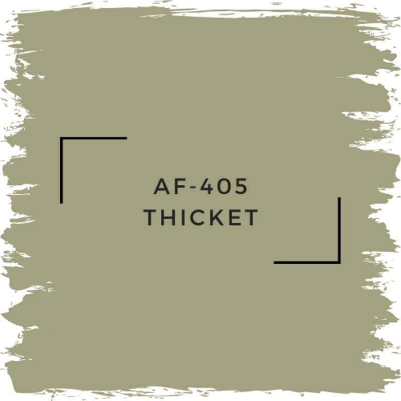 Benjamin Moore AF-405 Thicket