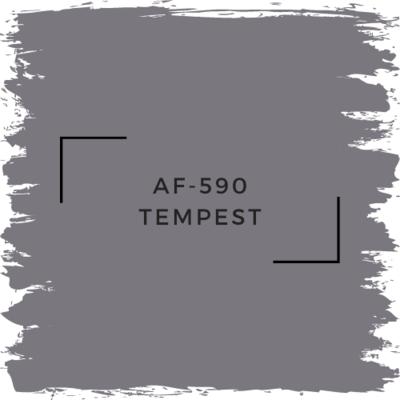 Benjamin Moore AF-590 Tempest