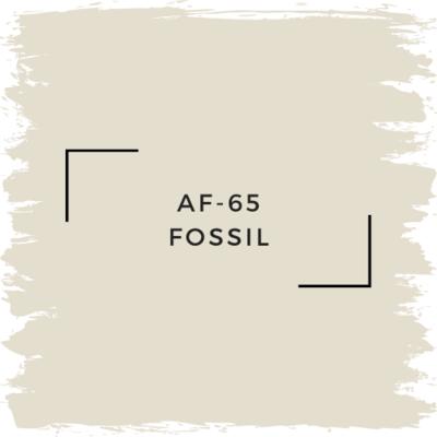 Benjamin Moore AF-65 Fossil